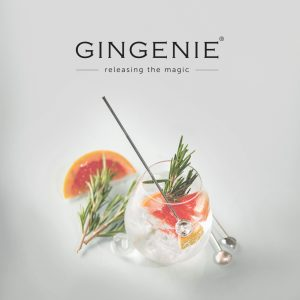 Gin Glass and GineGenie